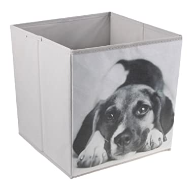 Clever Creations Cute Dog Lying Collapsible Storage Organizer Cube Folding Storage Organizer for Animal Themed Rooms   Perfect Size Storage Cube for Books, Shoes, Games