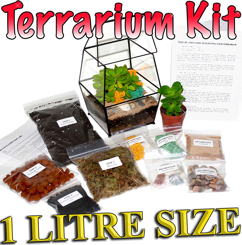 Kit de terrario, con guía paso a paso (idioma español no garantizado), embalado en Inglaterra: Amazon.es: Jardín
