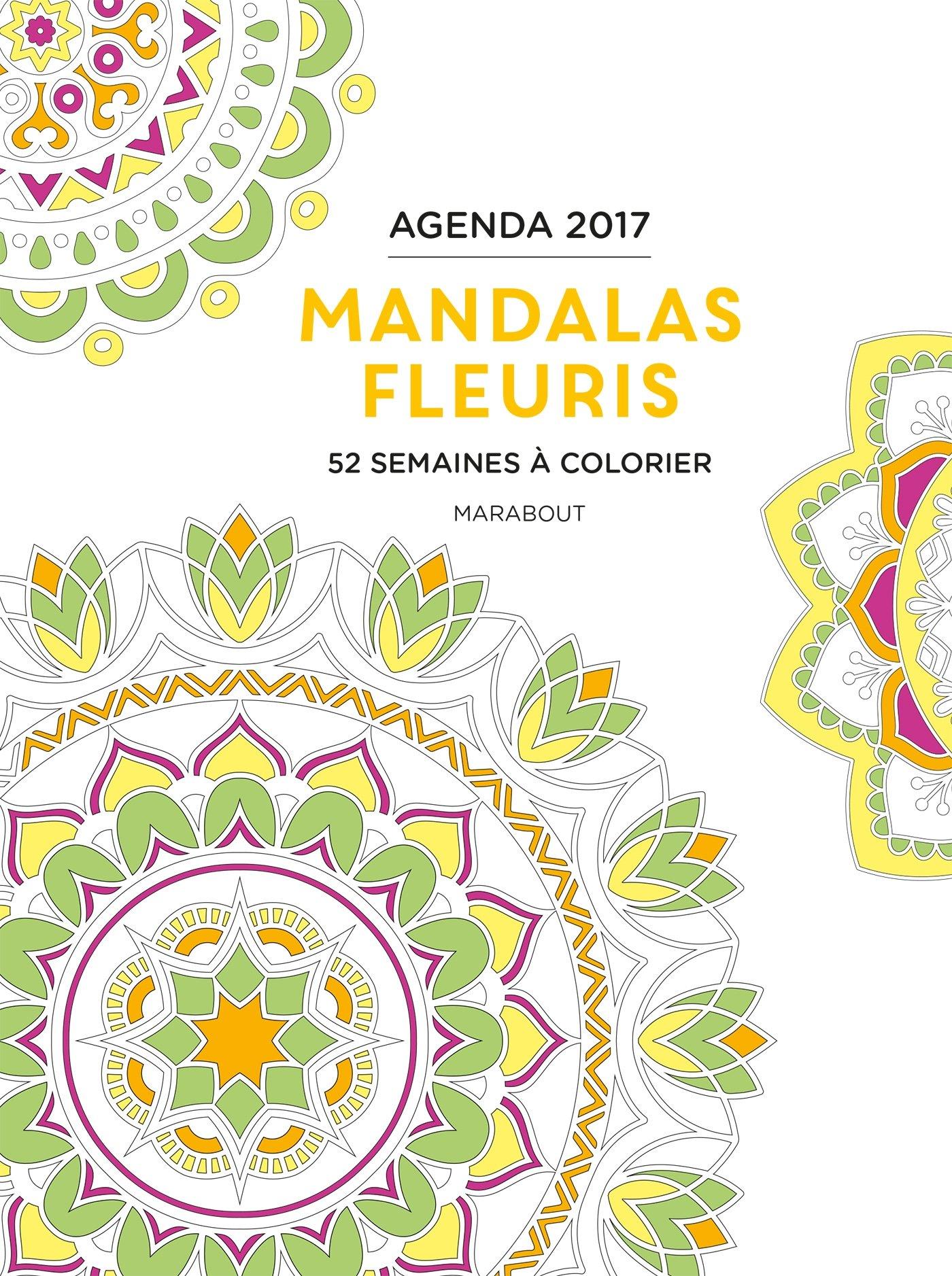 Agenda à colorier mandalas fleuris 2017: 9782501113236 ...