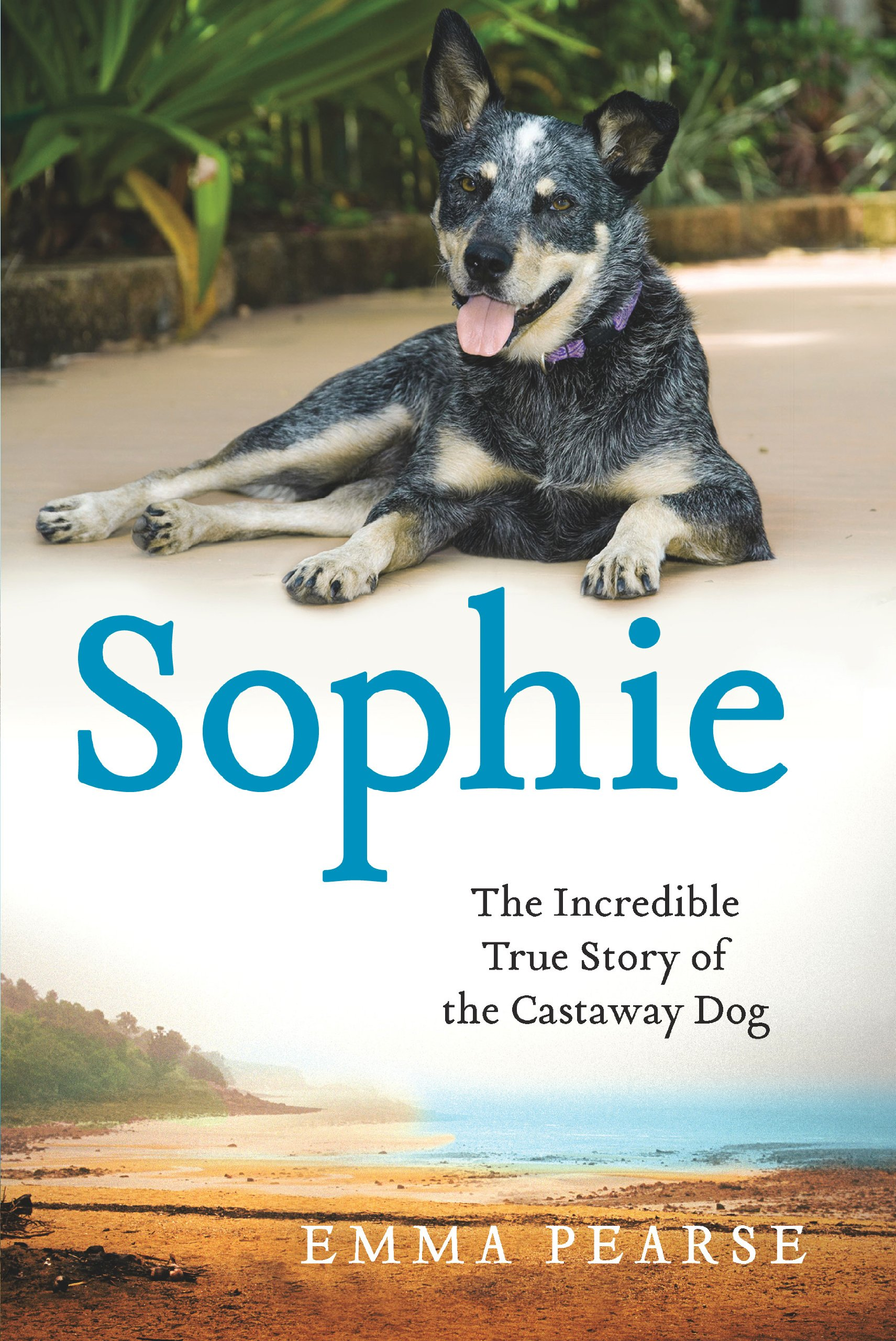 Sophie: The Incredible True Story of the Castaway Dog (Thorndike Press Large Print Nonfiction Series) pdf epub