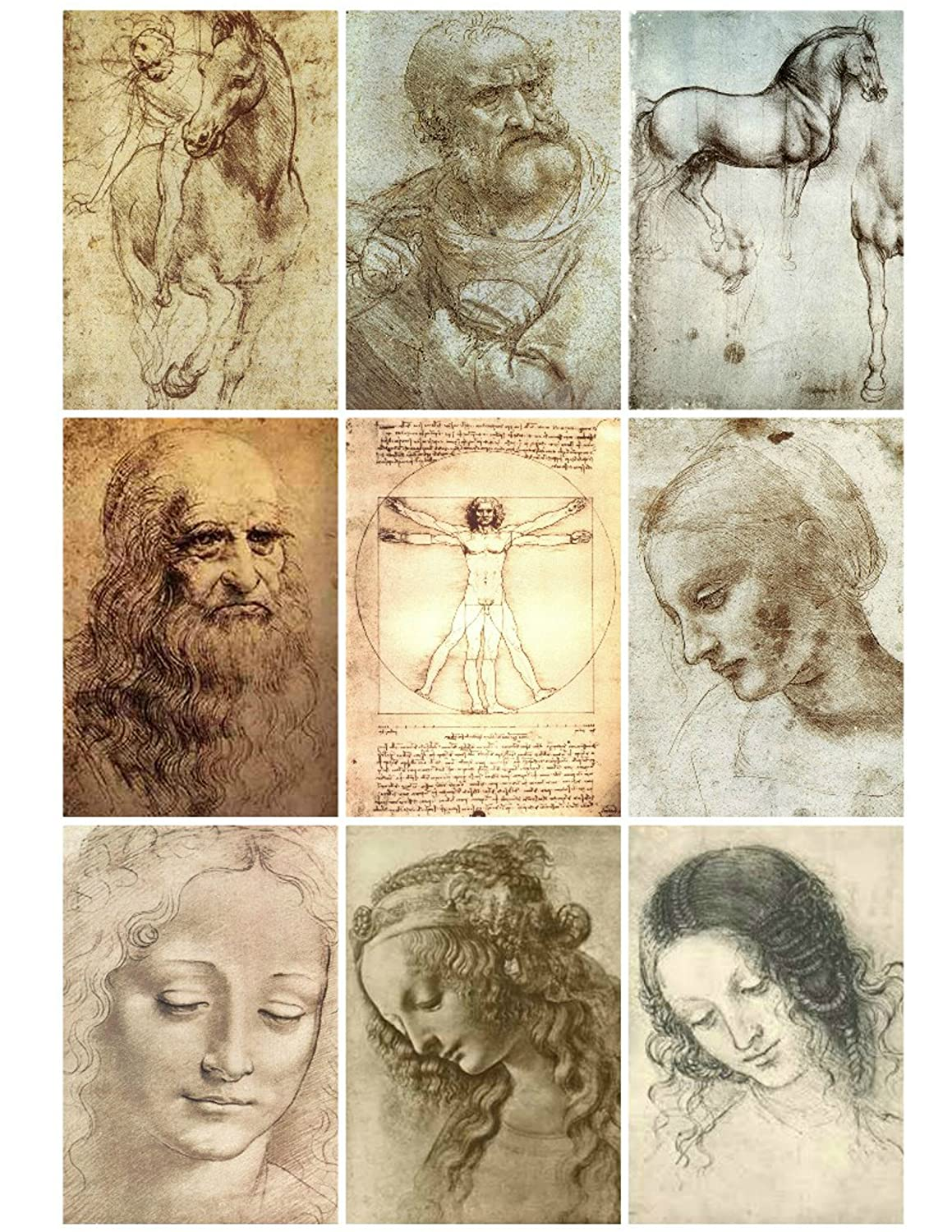 Collage Sheet Printable Vintage Leonardo Da Vinci Art Sketches Instant Digital Download, for Decoupage Altered Art, Scrapbook Embellishments Paper Moon Media
