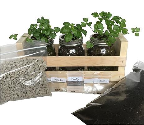 Amazon.com : Indoor Herb Garden Kit -Great for Growing an Indoor ...