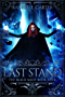 Last Stand (The Black Mage Book 4) (English Edition)