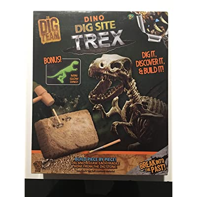 Dig Team Dino Dig Site T-Rex Dig It, Discover It & Build It: Toys & Games