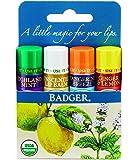 Badger Organic Lip Balm 4 Sticks Gift Set Blue Pack