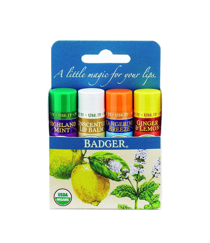 Badger Lip Balm 4 Sticks Gift Set Blue Pack Badger Balm GRA-BA014