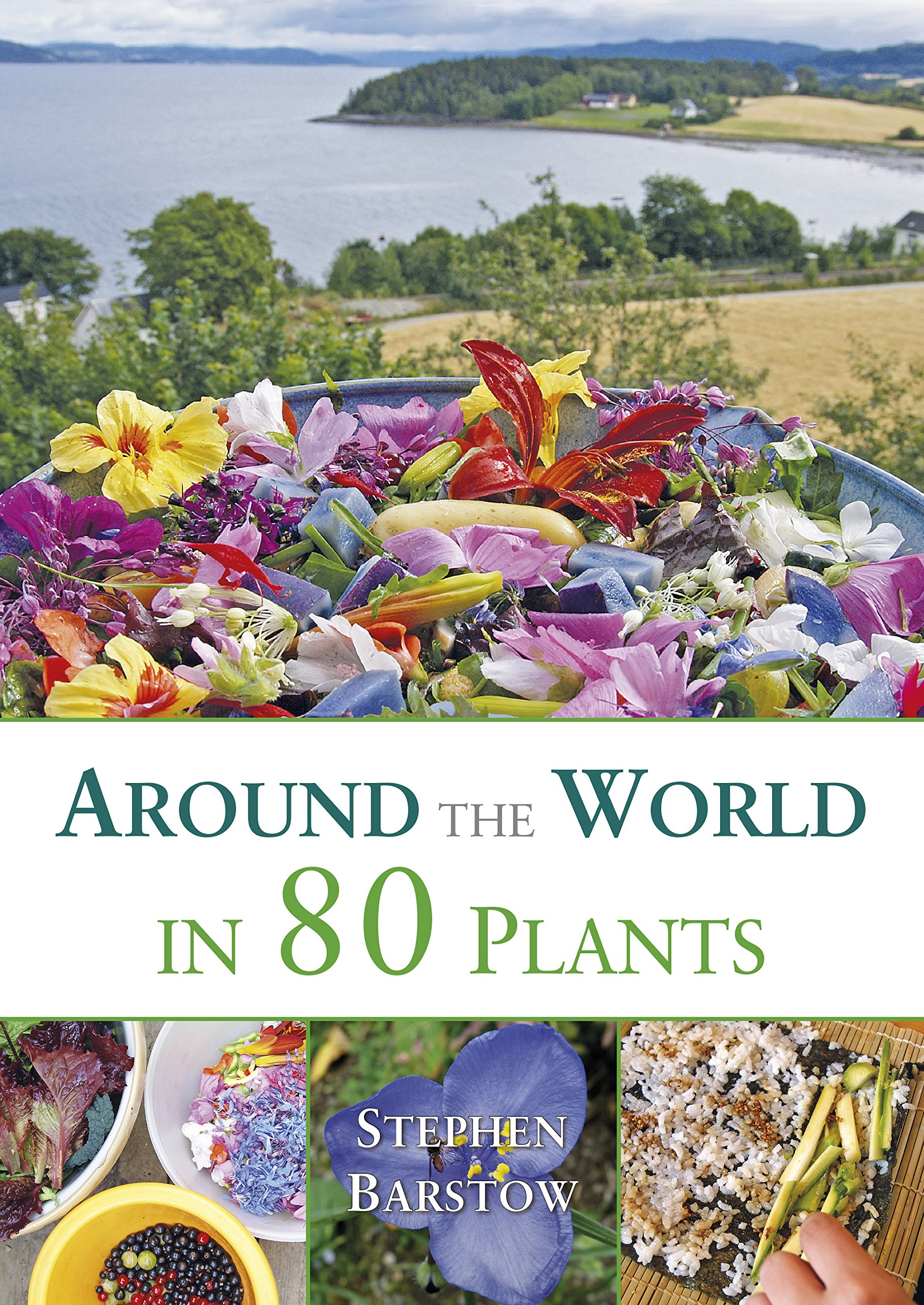Around The World in 80 Plants: An Edible Perennial Vegetable Adventure for Temperate Climates by Permanent Publications