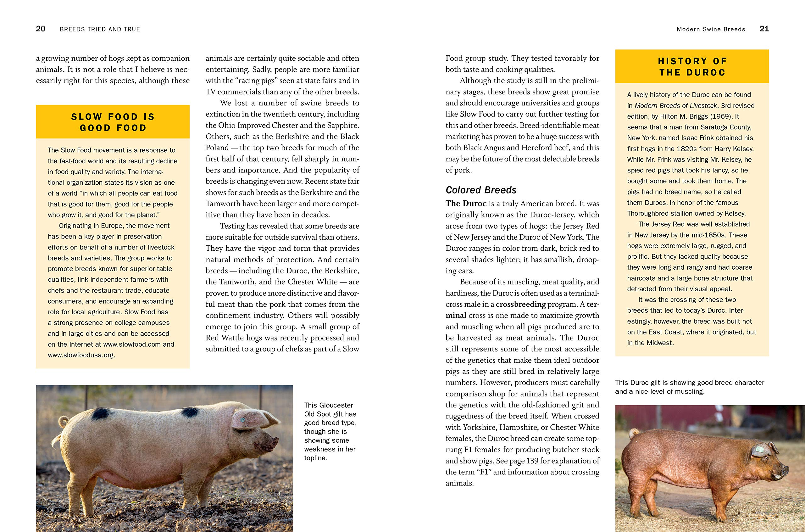 Storey's Guide to Raising Pigs, 4th Edition: Care