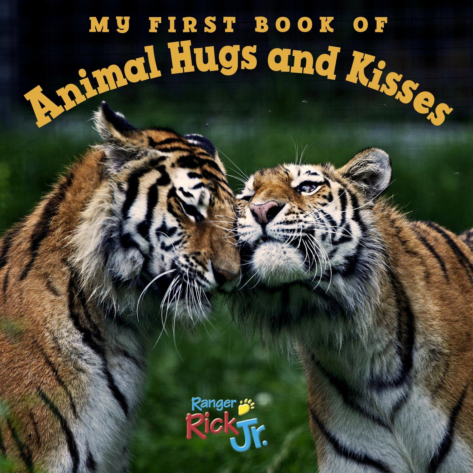 My First Book of Animal Hugs and Kisses (National Wildlife Federation) ebook