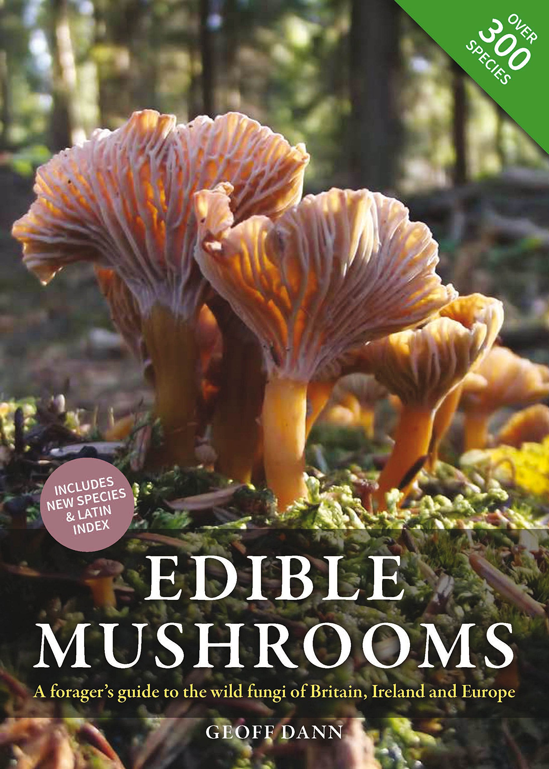 edible-mushrooms-a-forager-s-guide-to-the-wild-fungi-of-britain-ireland-and-europe