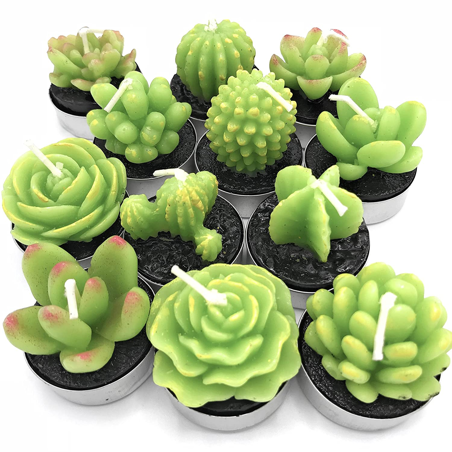 Succulent Cactus Candles Decor in Tealight holders 12 Unique Designs Tinker Factory