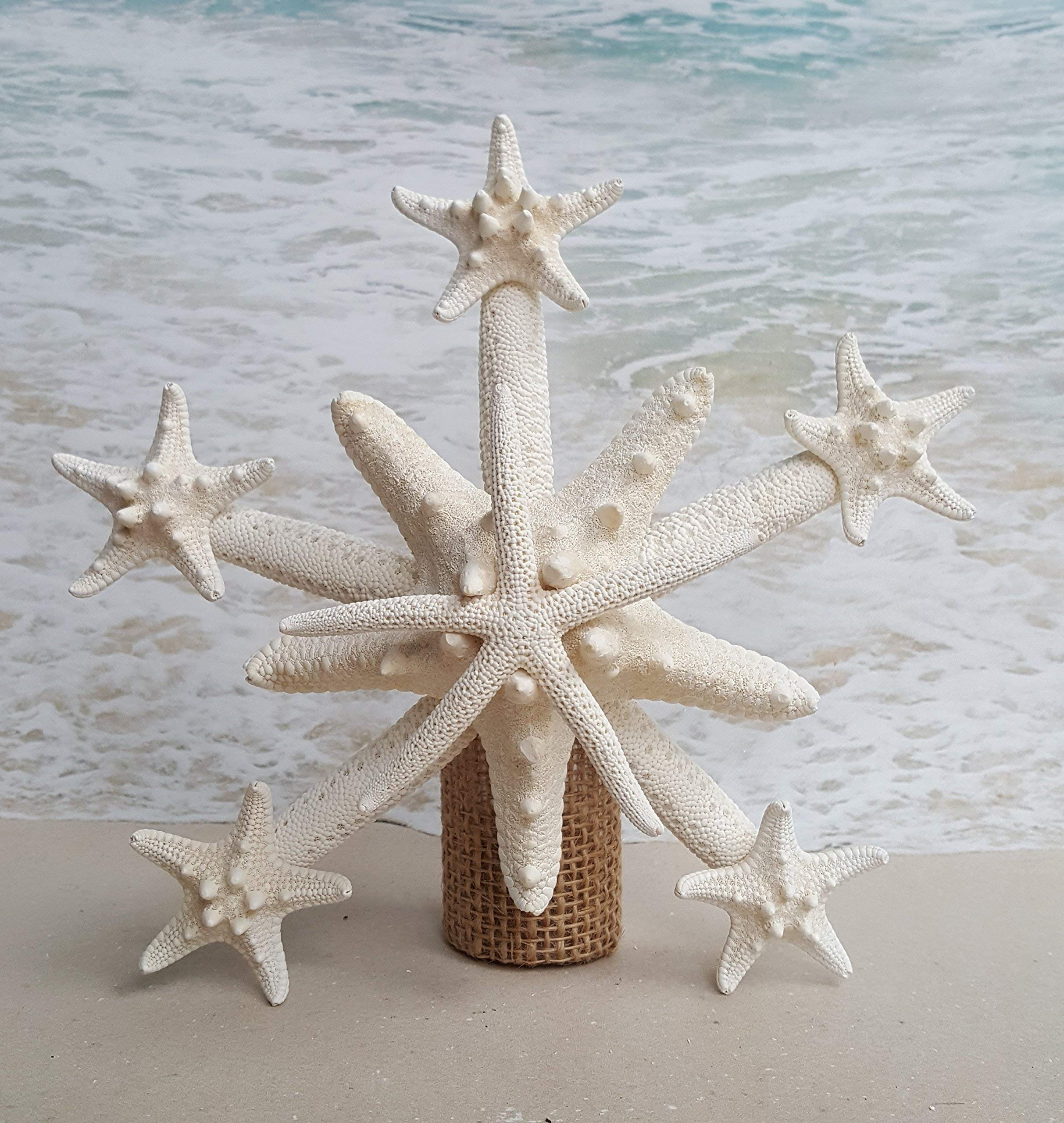Deluxe Starfish Tree Topper - Different size options up to 15-16''