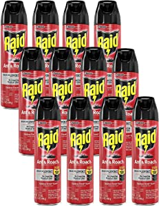 Raid Ant & Roach Killer Spray for Listed Bugs, Insect, Spider, For Indoor Use, Fresh Scent, 17.5 Oz, Pack of 12
