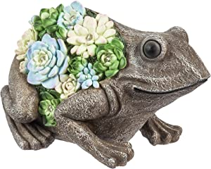 Evergreen Garden Solar Resin Succulent Frog