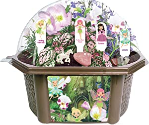 TOYS BY NATURE Grow Your Own Fancy Fairy Garden - Delightful Blooms and Bright Fun Foliage - Includes Everything Needed to Create Your Fairy Wonderland