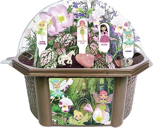 Toys By Nature Juguetes por la Naturaleza para Cultivar tu Propio jardín de Hadas – Preciosas Flores