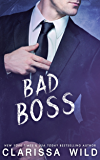 Bad Boss (Unprofessional Bad Boys Book 2)