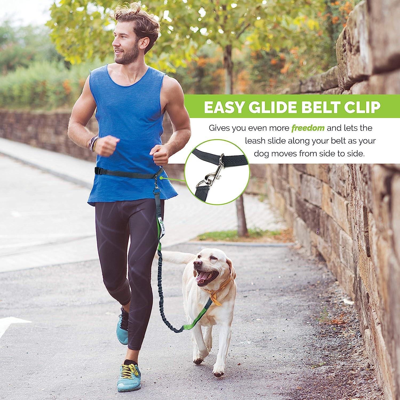 Ombr\u00e9 Boho Tauleine Hailey for dogs Dog leash