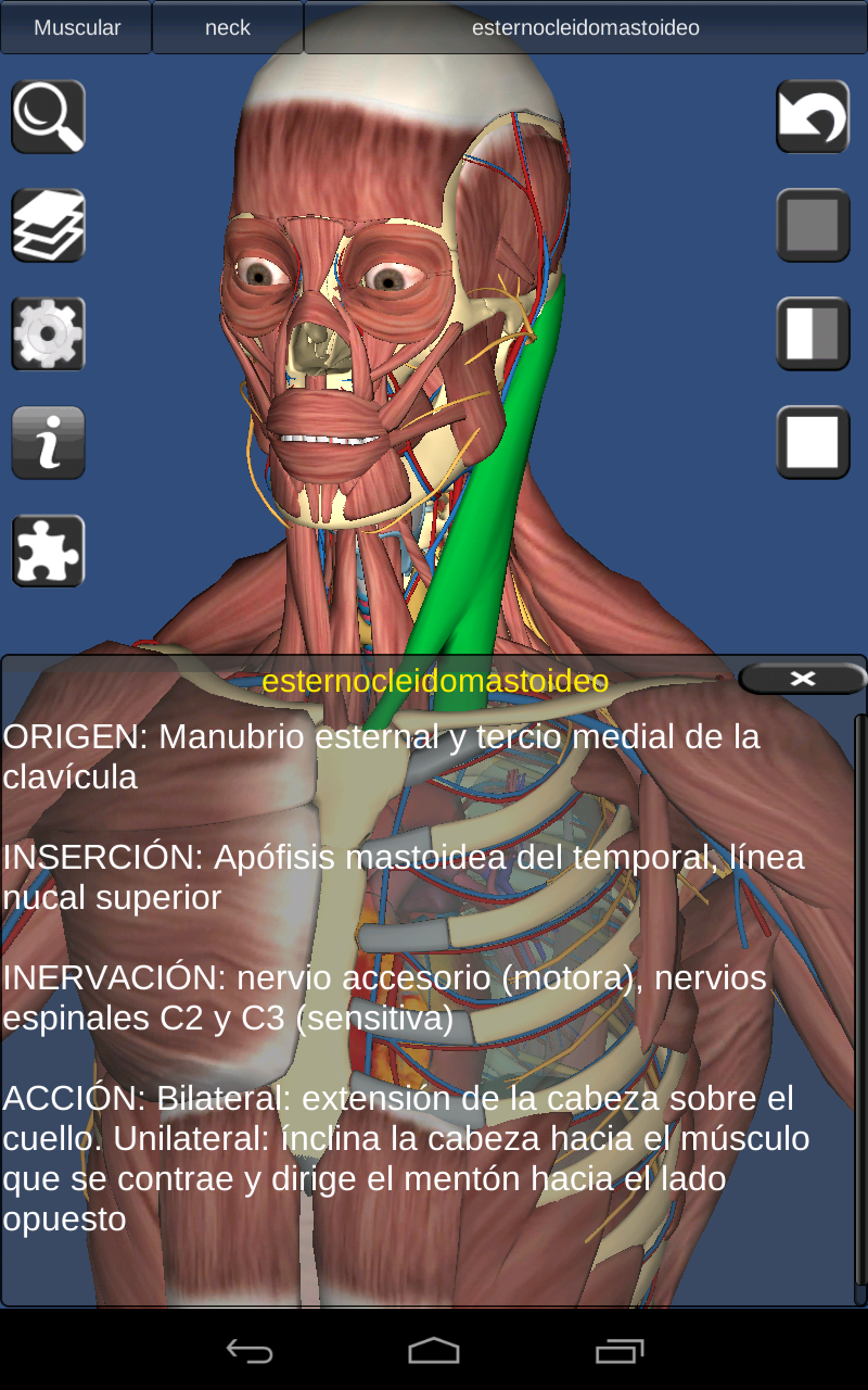 Beste Anatomy And Physiology Revealed 3.0 Download Galerie ...
