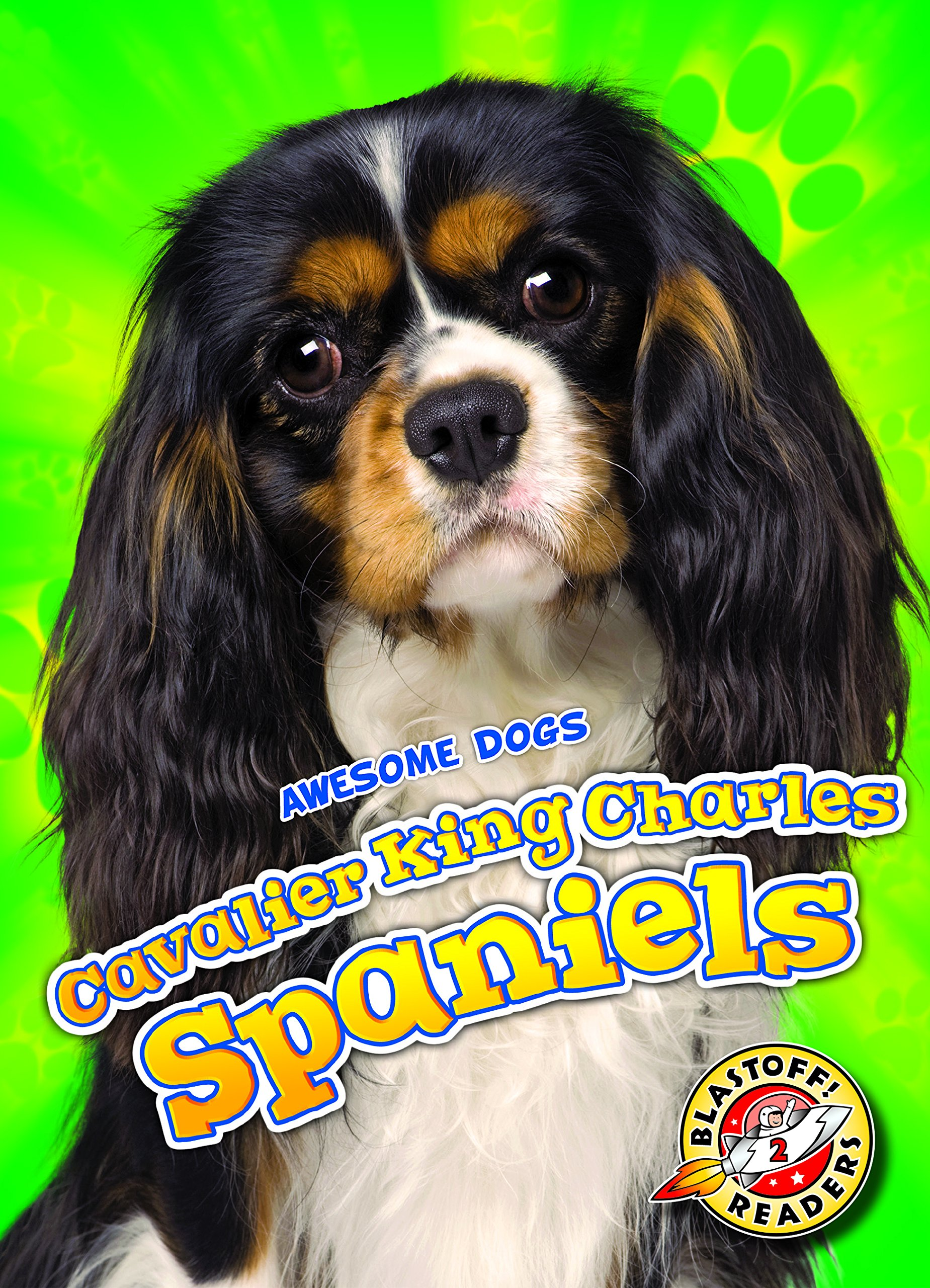 Cavalier King Charles Spaniels (Awesome Dogs: Blastoff Readers. Level 2) pdf