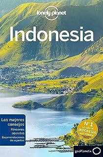 Lonely Planet Indonesia (Travel Guide): Amazon.es: Eimer, David, Bartlett, Ray, Bell, Loren, Bremner, Jade, Butler, Stuart, Harding, Paul, Harrell, Ashley, Holden, Trent, Johanson, Mark, Levin, Sofia, Maxwell, Virginia, Morgan, MaSovaida, Walker, Jenny: