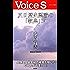 反日歴史認識の「教典」Ⅳ (Voice S)