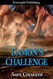 Damon's Challenge (Creek Valley Book 3)