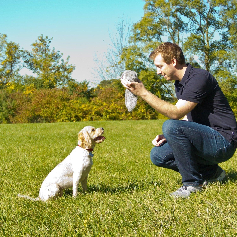 Hyper Pet Doggie Tail Plush Interactive Dog Toy