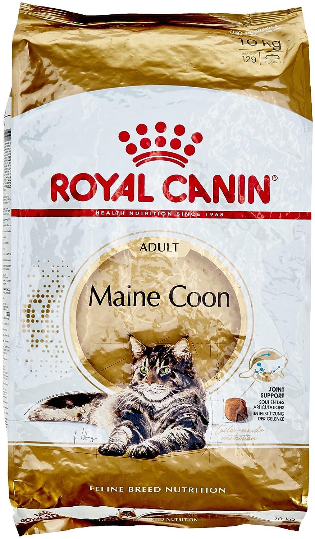ROYAL CANIN MAINE COON ADULT Sac de 10 kg/Croquettes prémium pour le chat Maine Coon Adulte. 03RCMC10