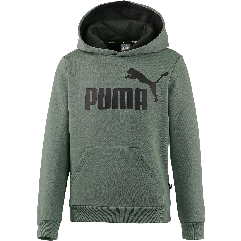 Puma ESS Logo Hoody FL B, Pants Kinder Einheitsgröße 852105