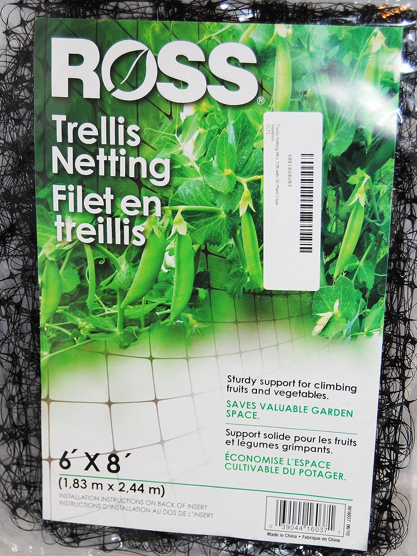 Bert's Garden Trellis Netting 6ft x 8ft with 20 Plant Clips