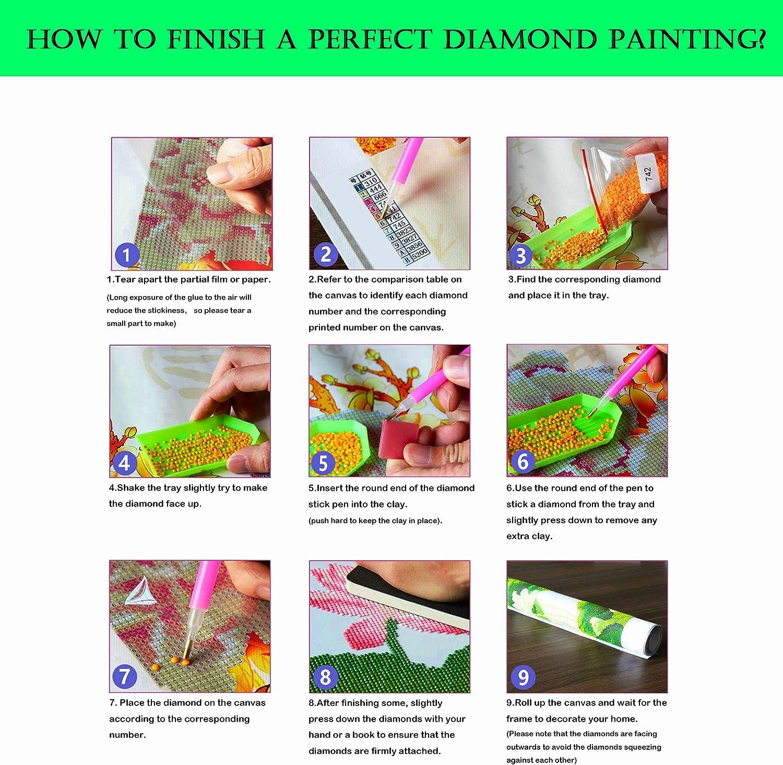 Kit Completo per Diamond Painting 5D Fai da Te con Strass incollati Ponte e Fiori 24X30CM LoveMyHome Mosaico per Punto Croce Paesaggio di Campagna
