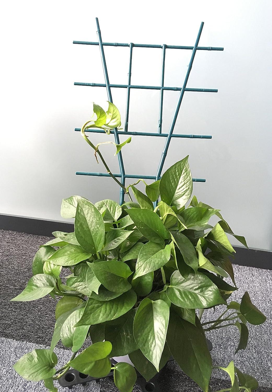 "Yostopper Fan Pot Trellises Artificial Bamboo Pot Trellises for Climbing Plant 19/""Tall Black Green,Pack of 4"