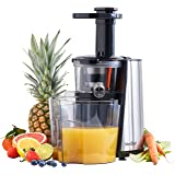 Andrew James Black Professional Masticating Slow Juicer : Breville Antony Worrall Thompson JE8 Professional Juice Extractor 850w: Amazon.co.uk: Kitchen & Home