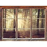 radura del bosco alla luce del sole, la finestra adesivi murali 3D Formato: Decorazione della parete 62x42cm 3D adesivi da parete decalcomanie