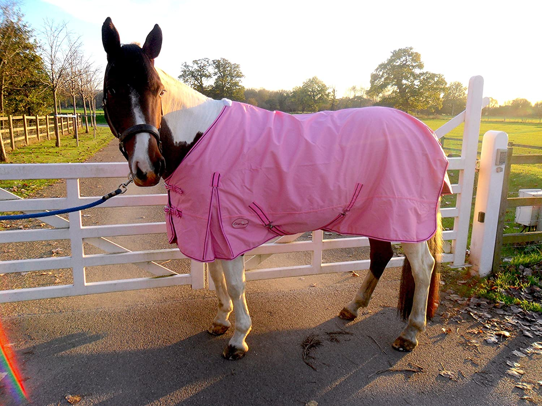 Cwell Equine - Alfombra para Lluvia (100% Impermeable, Transpirable, 600 Denier, Calidad Mejor, Color Rosa
