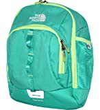 The North Face Youth Sprout Mini Backpack Retro Green