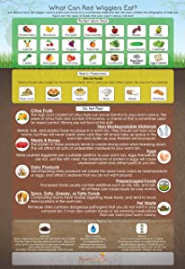 What Can Red Wigglers Eat? 13x19 Infographic Poster for Live Red Wiggler Worm Composting Bins - an Essential Accessory to Any Worm Farm Starter Kit - Perfect for Kids & Adults
