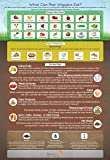 """What Can Red Wigglers Eat?"" Infographic Refrigerator Magnet for Live Red Wiggler Worm Composting Bins - An Essential…"