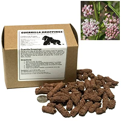 Narrowleaf Milkweed Guerrilla Droppings - Seed Pellets for Guerrilla Gardening (Asclepias fascicularis) : Garden & Outdoor