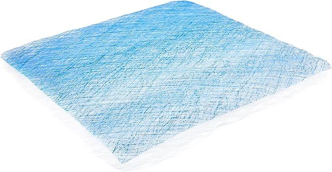 18g Pad Viskon-Aire 017-202 107X Blue 20 x 20 x 2.5 Fiberglass Paint Arrestor