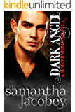 Dark Angel (Summer Spirit Novellas Book 2)