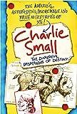 Charlie Small 4: The Daredevil Desperados of Destiny (Charlie Small (Paperback))