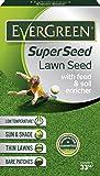 Evergreen Garden Care Ltd Super Seed Lawn Seed, Carton, 1 kg