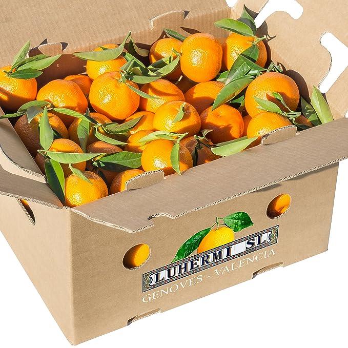 Caja de 15 kg de mandarinas