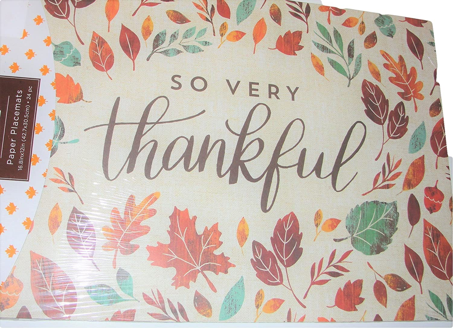 Fall Paper Disposable Place Mats, Autumn Leaves, 24 pcs, Thanksgiving meal, banquets, Homeless shelters, party decor