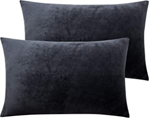NTBAY Solid Velvet Queen Pillowcase, 2 Packs Super Soft and Cozy Luxury Zippered Pillow Cases, 20 x 30 Inches, Charcoal Grey