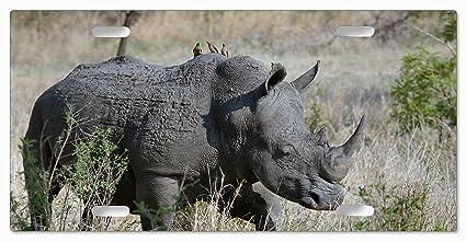 Amazon com: Walking Rhino - License Plates: Arts, Crafts
