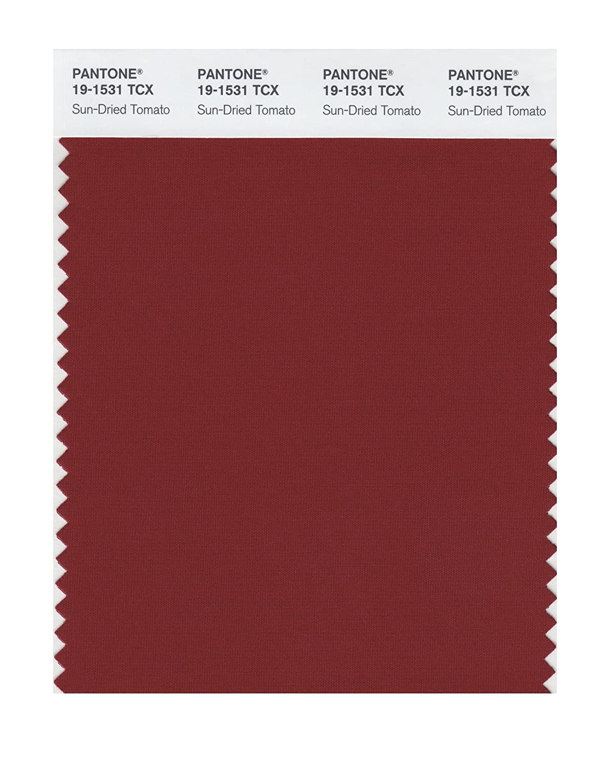 Pantone 19-1531 TCX Smart Color Swatch Card, Sun-Dried Tomato - House Paint  - Amazon.com