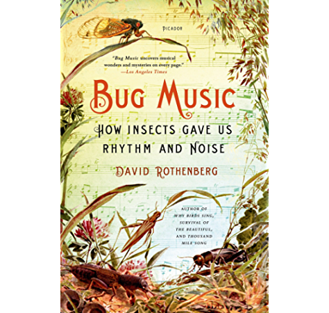 Bug Music How Insects Gave Us Rhythm And Noise Rothenberg David Amazon Com